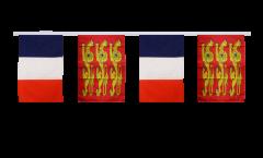 Freundschaftskette Frankreich - Haute Normandie, treis cats - 30 x 45 cm