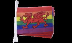 Fahnenkette Regenbogen mit walisischem Drachen - 15 x 22 cm