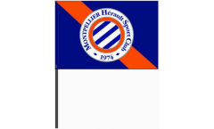 Stockflagge HSC Montpellier - 40 x 60 cm
