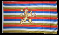 Flagge Deutschland Kurpfalz 1356-1803