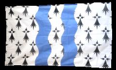 Flagge Frankreich Ille-et-Vilaine - 90 x 150 cm