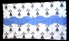 Flagge Frankreich Loire-Atlantique - 90 x 150 cm