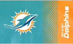 Flagge Miami Dolphins Fan