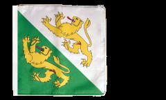 Flagge Schweiz Kanton Thurgau - 30 x 30 cm