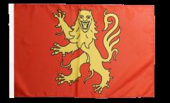 Flagge Frankreich Aveyron - 30 x 45 cm