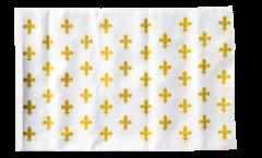 Flagge Frankreich Lilienwappen, weiß - 30 x 45 cm