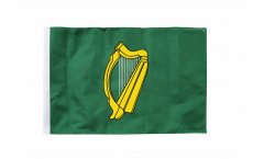 Flagge mit Hohlsaum Irland Leinster